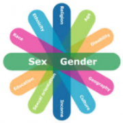 Flower shape graphic depicting intersection factors such as sex, gender, race, age/